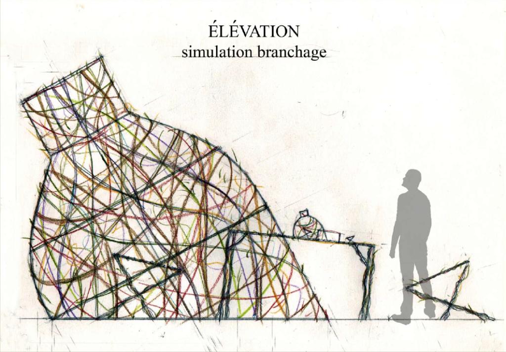 "simulation branchage, élévation, projet 1, ""émergence"""