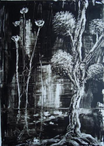 Paysage, encre sur transparent, 2015, 65x50 cm