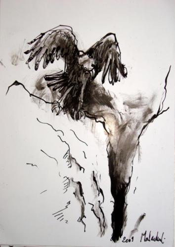 Rapace, 2009, encre sur papier, 30x21 cm
