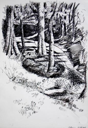 Sous bois 2, 2008, encre sur papier, 42x30 cm